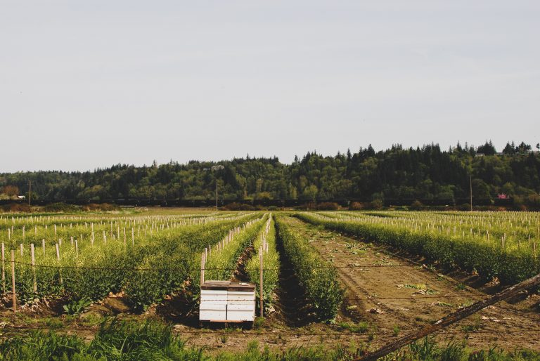 25 projects funded through Advancing Farm Sustainability