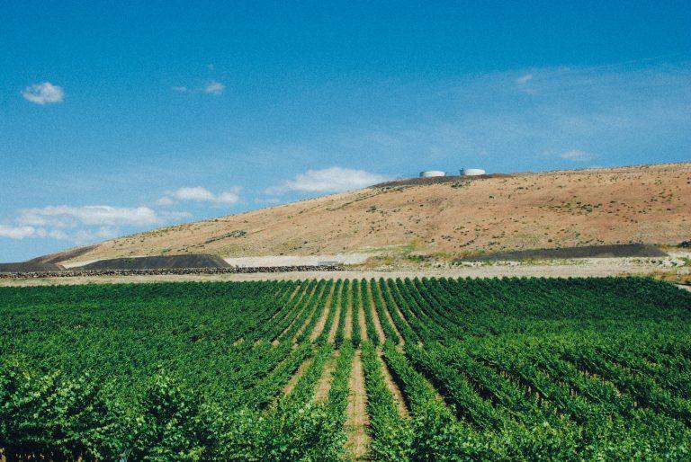 Powers Winery raises $250,000 for farmland