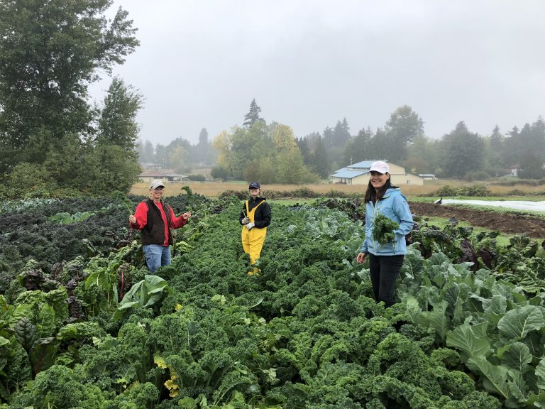 How two farming advocates are growing the Pierce County ag community