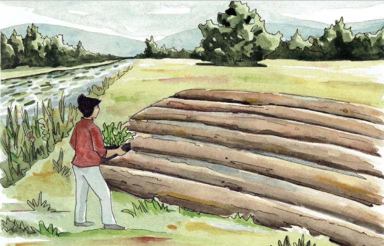 A holistic vision for the future of farming